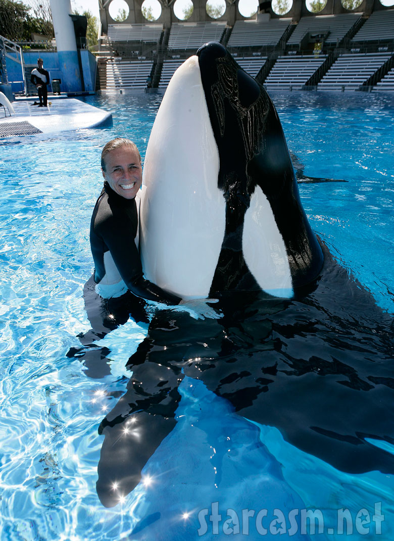 sea world trainer dawn brancheau killed by orca tilikum