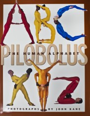 The Pilobolus Human Alphabet book cover