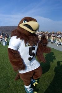 Lehigh University Mountain Hawks mascot