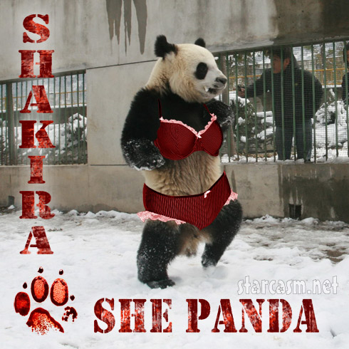 Shakira album cover for She Panda