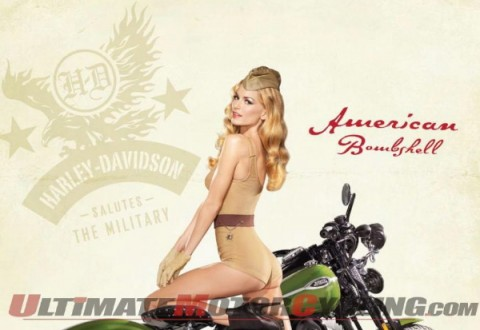 Remarkable Harley bikini poster accept. The