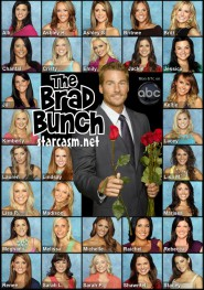 The Bachelor 15 Brad Womack Brady Bunch photo with all 30 women from The Bachelor 2011