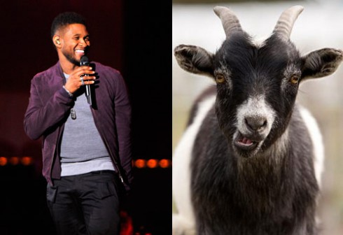 Usher sings &quot;papers&quot; with Goat