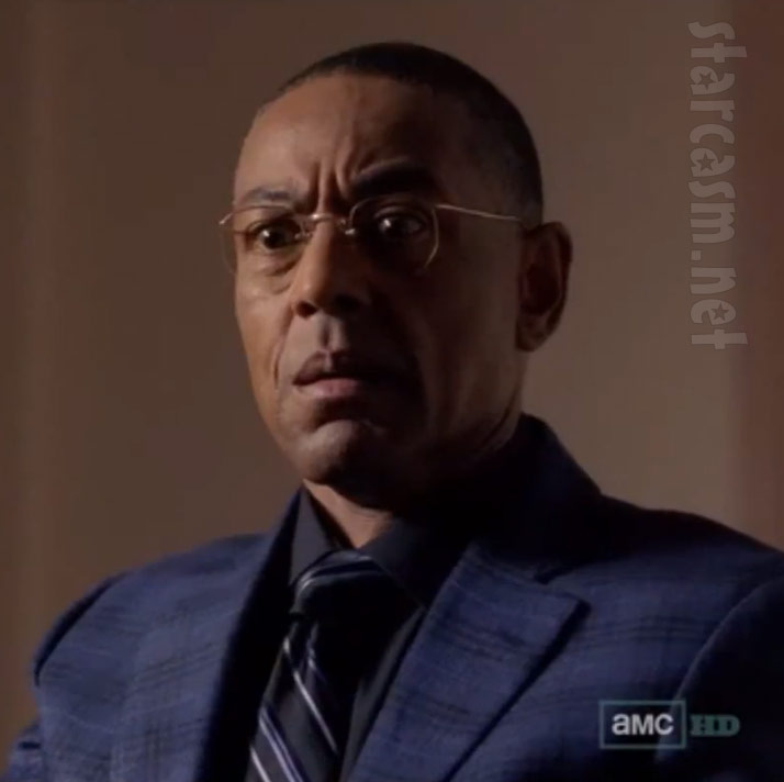 Gustavo Fring Face Blown Off