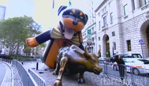 video triumph the insult comic dog poops on occupy wall street on