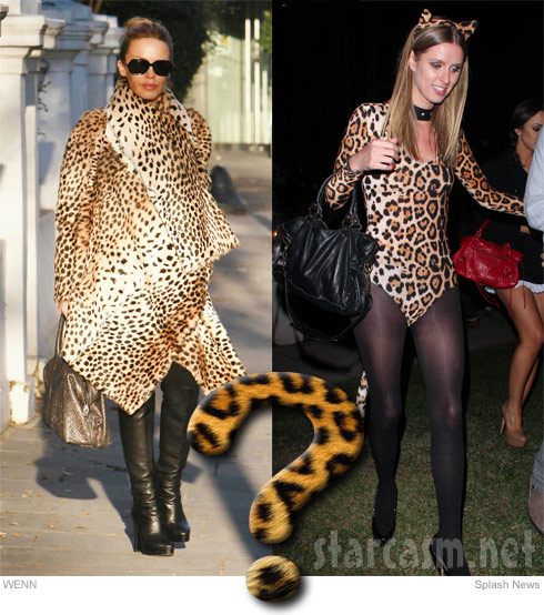 cheetah print versus leopard print