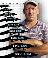 2011_alligator_prices_tn