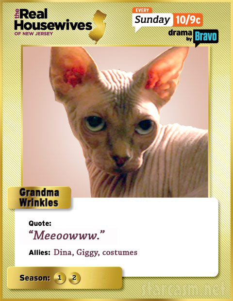 Grandma Wrinkles Real Housewives of New Jersey trading card