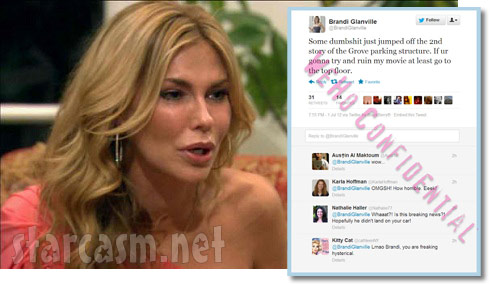 Brandi Glanville apologizes for suicide joke on Twitter