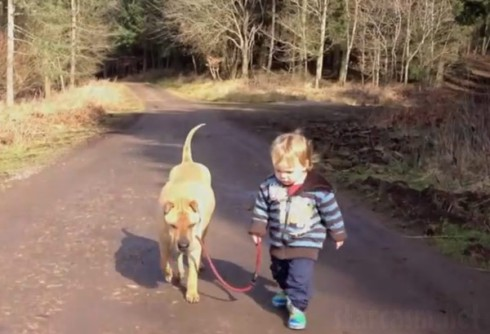 Little boy play sin a mud puddle while walking his dog viral Youtube video