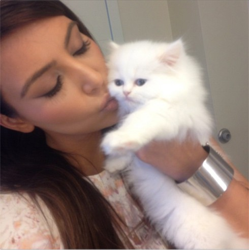 Kim Kardashian's kitty died