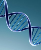 DNA May Make Genetic Matchmaking Possible
