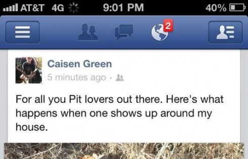Oklahoma teen Caisen Green kills pit bull with bow and arrow