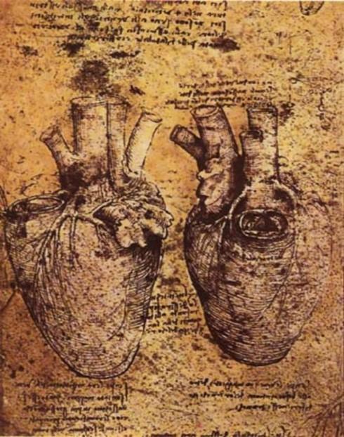 Leonardo da Vinci anatomical heart illustration Miley Cyrus tattoo