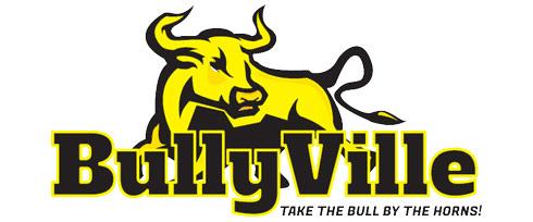 BullyVille.com logo