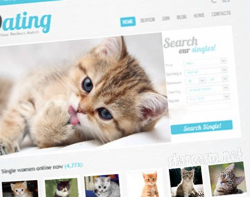 Online dating site for cats
