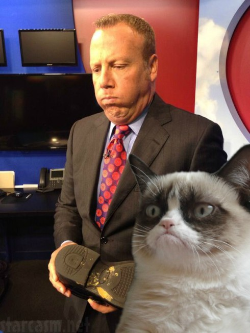 Video Weatherman Scot Haney Ate Cat Vomit After Confusing