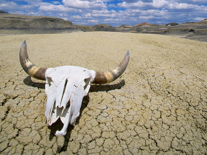 Death Valley Residents Death Valley Residents Who