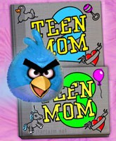 Teen_Mom_2_3_Twitter_feud_tn