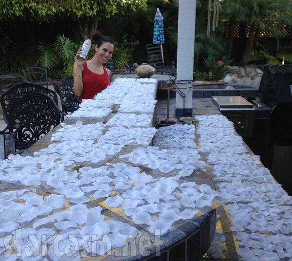PHOTOS Even Stevens' Christy Romano Weds Screenwriter