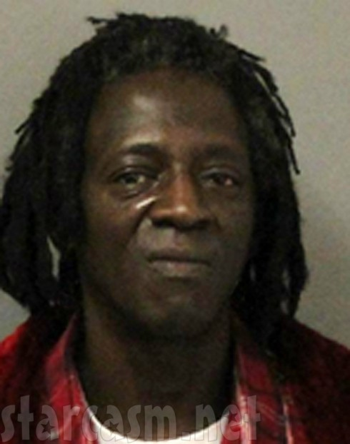 Flavor Flav Mug Shot - Mother's Funeral