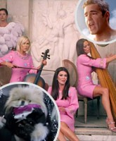 RHOBH_Lady_Gaga_video_tn