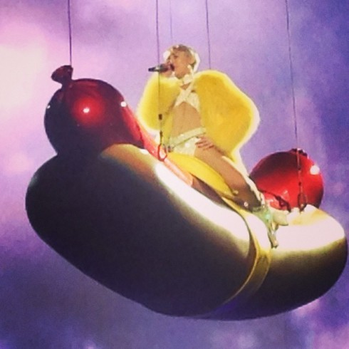 Jenelle Evans Miley Cyrus concert photo hot dog