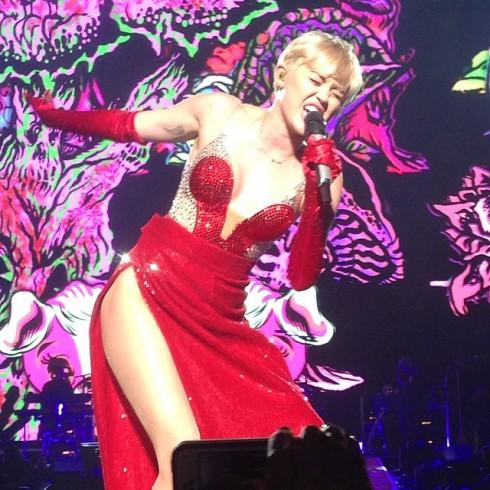 Jenelle Evans Miley Cyrus concert photo Jessica Rabbit