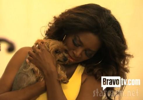 Kenya Moore and her dog Velvet Yorkie