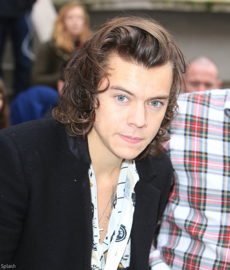 harry styles 2014 long hair Car Tuning