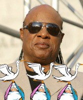 Stevie Wonder Triplets