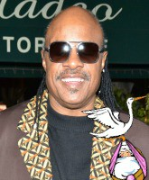 Stevie Wonder New Baby