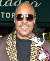 Stevie Wonder New Baby