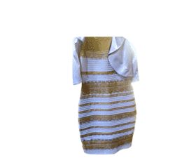 Header_png_gold_white_black_blue_dress