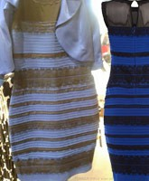 gold_and_white_black_and_blue_dress_tn