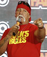 Hulk Hogan Racist Rant Feature