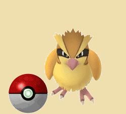pokemon go pidgey calculator