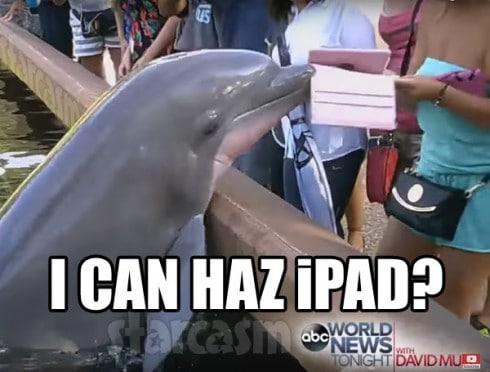 Dolphin I Can Haz iPad