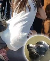 sea-lion-grabs-girl-steveston_TN