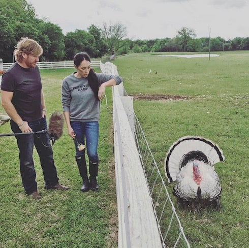 photos fixer upper season 5 update reveal spoilers chip 39 s new look possible guest stars and. Black Bedroom Furniture Sets. Home Design Ideas