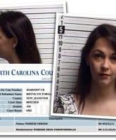 Tori Rhyne arrest 2016 2017