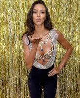 2 million dollar bra
