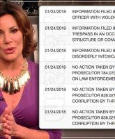 Countess Luann de Lesseps felony charges dropped