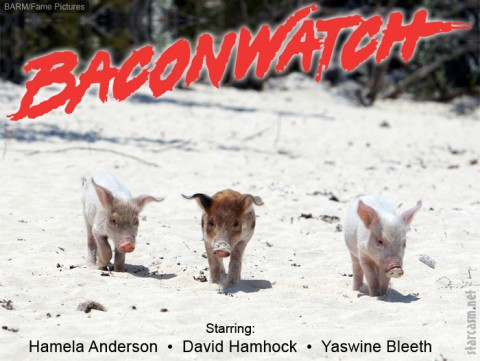 BaconWatch
