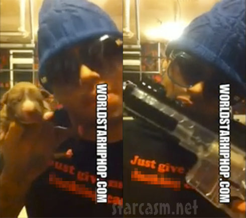 VIDEO Chris Brown spoofs Ricky Romance with a gun and a puppy
