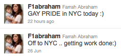 Teen Mom tweets support of New York's gay pride
