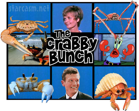 The Crabby Bunch starring Florence Henderson and John Lindsay