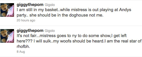 Giggy tweets about missing Andy Cohen's Hamptons magazine cover party