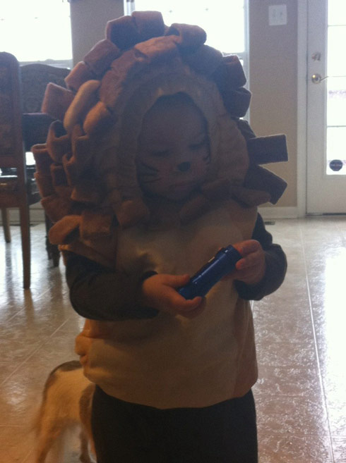 Kailyn Lowry's son Isaac as a lion