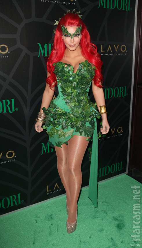 Kim Kardashian Poison Ivy Halloween costume  sc 1 st  Starcasm : poison ivy character costume  - Germanpascual.Com